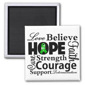 Collage hepático del cáncer de la esperanza iman