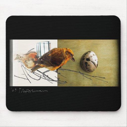 Collage Mousepad del pájaro de Grossbeak del pino