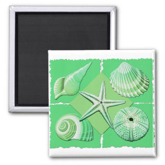 Collage of Seashells Shades of Green Magnet