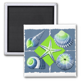 Collage of Seashells Slate Blue & Lime Green Magnet