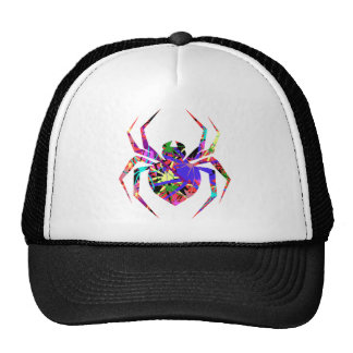 Collage of Spiders Hat