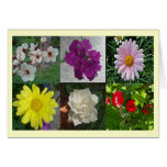 Collage of  Spring Stationery Note Card