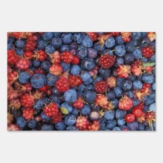 Collage of Wild Berries Blueberries Raspberries Sign