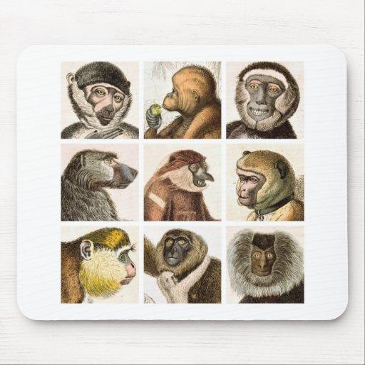 Collage principal del mono - alfombrillas de ratones