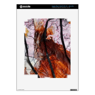 Collage  Products Skins For iPad 3