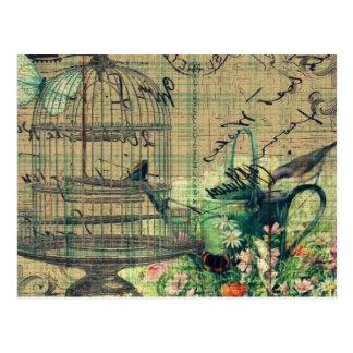 Collage w/Bird del vintage y jardín del Birdcage Tarjetas Postales