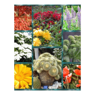 collage wonderful flowers and plants personalized letterhead