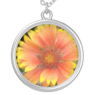 Collar anaranjado y amarillo de la flor