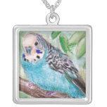 Collar azul del Parakeet