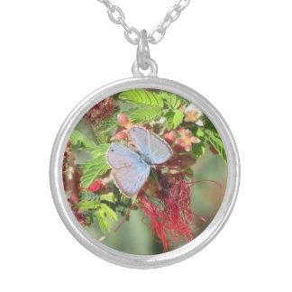 Collar azul marino de la mariposa