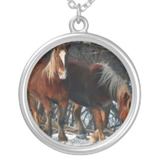 Collar belga del caballo de proyecto