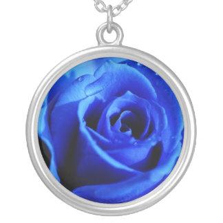 Collar color de rosa azul