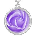 Collar color de rosa púrpura bonito