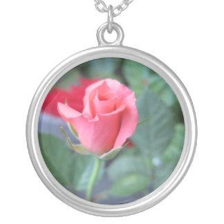 Collar color de rosa rosado