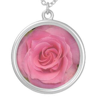Collar color de rosa rosado oscuro