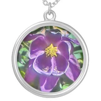 Collar columbine púrpura de la flor