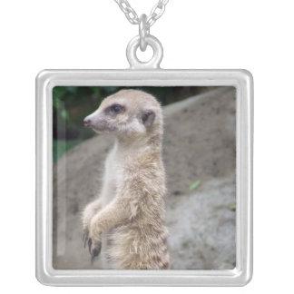 Collar contrapesado de Meerkat