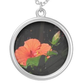 Collar coralino de la plata esterlina del hibisco