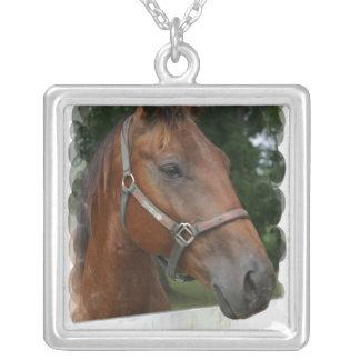 Collar cuarto de la foto del caballo