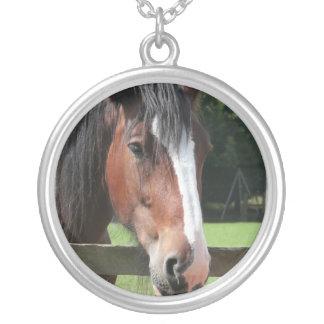 Collar cuarto de la imagen del caballo