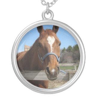 Collar cuarto dulce del caballo