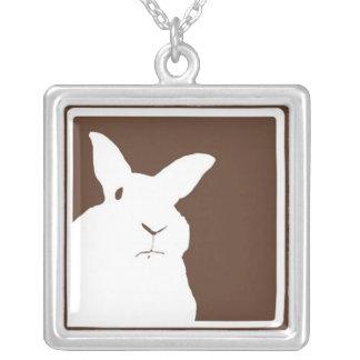 Collar de desaprobación de Brown de los conejos