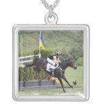 Collar de Eventing de los caballos