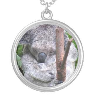 Collar de la abrazo de la koala