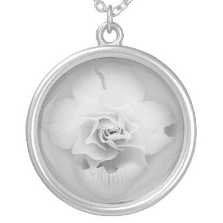 Collar de la flor blanca