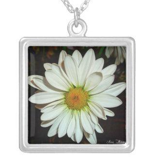 Collar de la flor de la margarita blanca