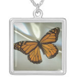 Collar de la mariposa