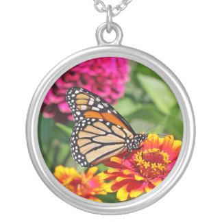 Collar de la mariposa de monarca