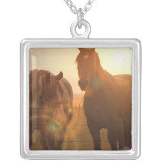 Collar de la plata esterlina de los caballos de la