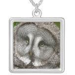 Collar de la plata esterlina del búho de gran gris