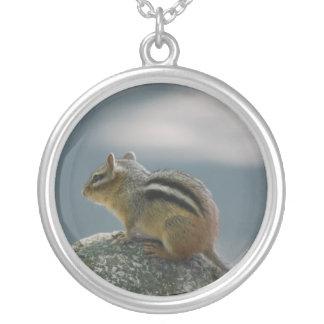 Collar de la plata esterlina del Chipmunk