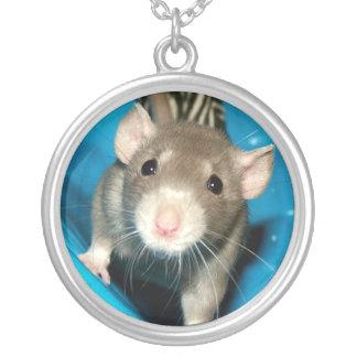 Collar de la rata del mascota de Noah del bebé
