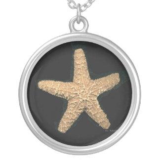 Collar de las estrellas de mar, joyería de las est