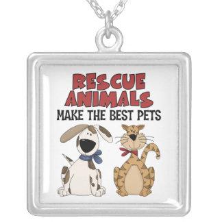 Collar de los animales del rescate