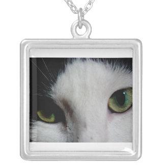 Collar de los ojos de gato (Photograhic)