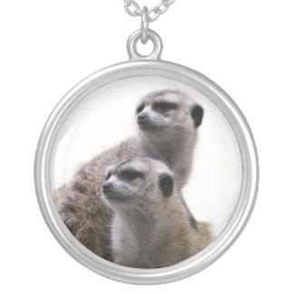 Collar de los pares de Meerkat