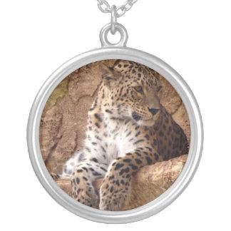 Collar de reclinación del leopardo