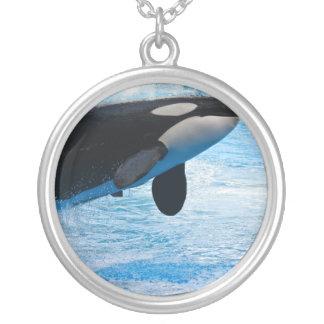 Collar de salto de la ballena