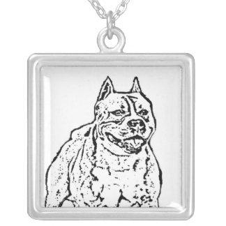 Collar de Staffordshire Terrier americano