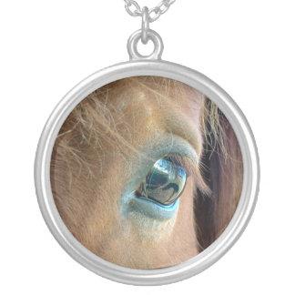 Collar de Vision del caballo