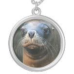 Collar de Wet Seal