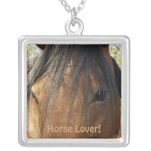 Collar del caballo