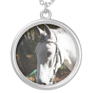 Collar del caballo blanco