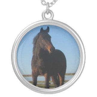 Collar del caballo de bahía