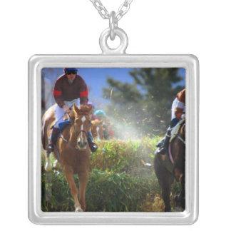 Collar del caballo de Eventing