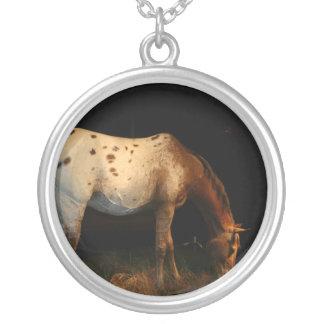 Collar del caballo del Appaloosa